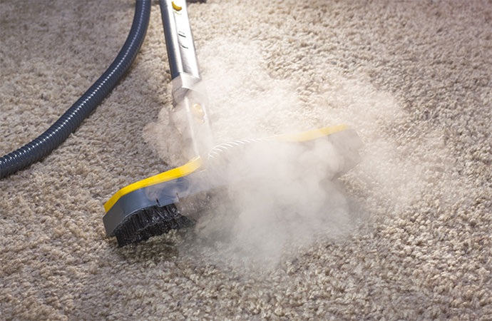 Carpet Cleaning with Steam