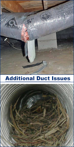 Broken duct system and nest inside duct