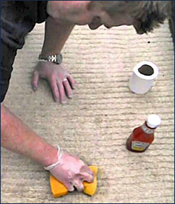 A man trying to clean Ketchup Stain on the Carpet